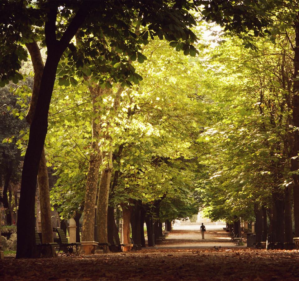 Villa Borghese - Il Parco